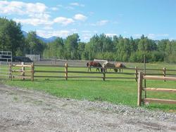 10' Cedar Split 3-Rail Fence Section