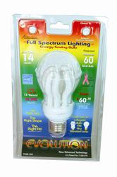 14W 5000K Candelabra Base CFL Light Bulb