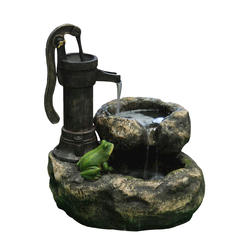 Pump with Frog Fountain