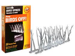 Bird-X 10' Poly Bird Spikes Kit with Adhesive