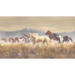 Palomino Ponies Border