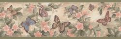 Buttercup Butterfly Border