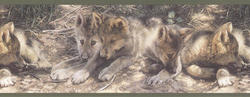 Baby Wolves Border