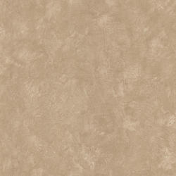 Taupe Plaster Texture