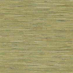 Green Grasscloth