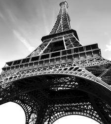 Paris Photgographic Panels Wall Decal