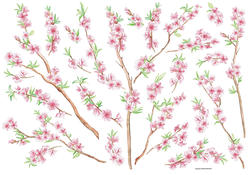 Peach Branch Wall Stickers