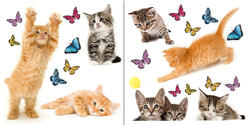 Cats Window Stickers