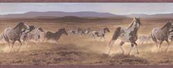 Wild Horses Border