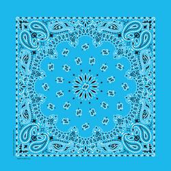 "22"" x 22"" Blue Paisley Bandanna"