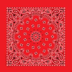 22' x 22' Red Paisley Bandanna