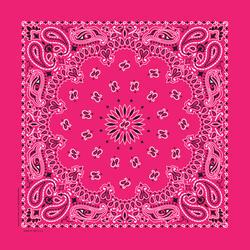 """22' x 22"""" Hot Pink Paisley Bandanna"""