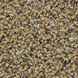 Carpet Crafts Jewels Frieze Carpet 15ft Wide