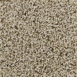 Citation Tenzar Plush Carpet 12 Ft Wide