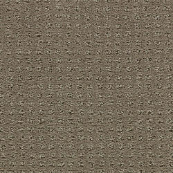 Citation Rhythmical Sculptured Carpet 12 Ft Wide
