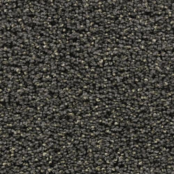 Citation Glitter Textured Frieze Carpet 12 Ft Wide