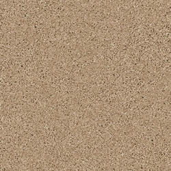 Citation Portis Plush Carpet 12 Ft Wide