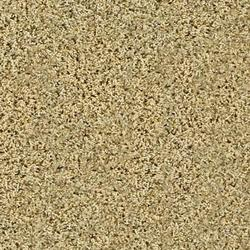 Citation Vita Textured Frieze Carpet 12 Ft Wide