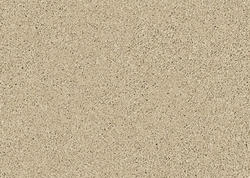 Citation Blanchard Frieze Carpet 12 Ft Wide
