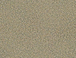 Citation Braxton Frieze Carpet 12 Ft Wide