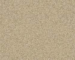 Citation Cadley Frieze Carpet 12 Ft Wide