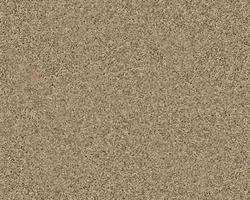 Citation Cadley Frieze Carpet 12 Ft Wide