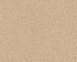 Citation City Park Frieze Carpet 12 Ft Wide