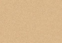 Citation Hailey Frieze Carpet 12 Ft Wide