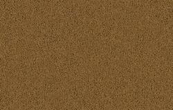Citation Hardee Frieze Carpet 12 Ft Wide