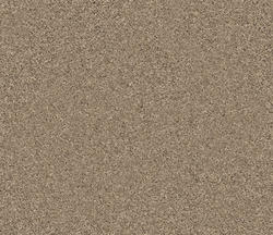 Citation Lovett Frieze Carpet 12 Ft Wide