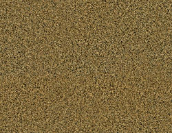 Citation Pebble Hill Frieze Carpet 12 Ft Wide