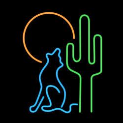 Desert Neon Sign