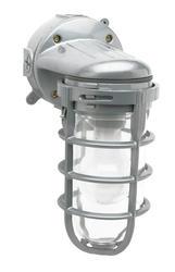 Weather-Tight 100 Watt incandescent wall-mounted light fixture