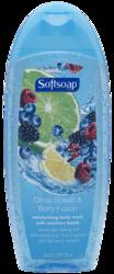 Softsoap Citrus Splash & Berry Fusion Moisturizing Body Wash - 18 oz