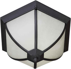 Photon 2-Light 8.5'' Black Finish Fluorescent Outdoor Flush Mount with Frosted Seeded Glass