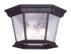 Photon 3-Light 7'' Bronze Incandescent Outdoor Flush Mount With Clear Water Glass