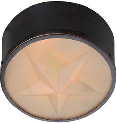 "Patriot Lighting Star 11.25"" Diameter Oil-Rubbed Bronze Outdoor Wall/Ceiling Light"