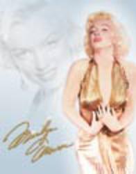 Desperate Enterprises Monroe - Gold Dress Sign