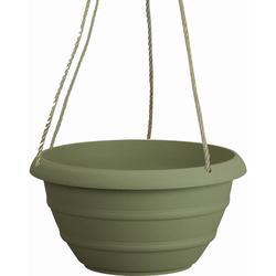 """12"""" Marina Hanging Basket"""