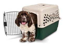 """Ruffmaxx® 28"""" Plastic Pet Carrier"""