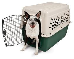 """Ruffmaxx® 36"""" Plastic Pet Carrier"""