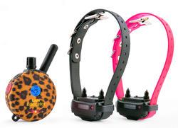 E-Collar Technologies Lady Educator Remote 2-Dog Training System