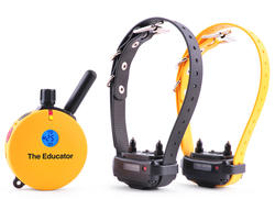E-Collar Technologies Educator Remote 2-Dog Training System