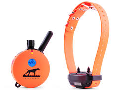 E-Collar Technologies Upland Hunting Remote 1-Dog Training System