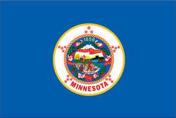 3' x 5' State of Minnesota Flag