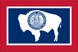 3' x 5' State of Wyoming Flag
