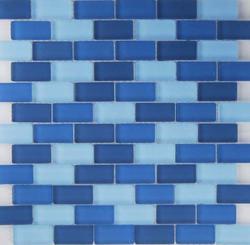 """Oceanz Mosaic Wall Tile 1"""" x 2"""""""
