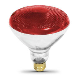 100 Watt BR38 Red Indoor or Outdoor Reflector Light Bulb