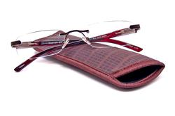 Foster Grant Rick Brown Reading Glasses for Men with Case