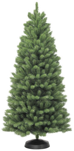 75 northern spruce christmas tree at menards174